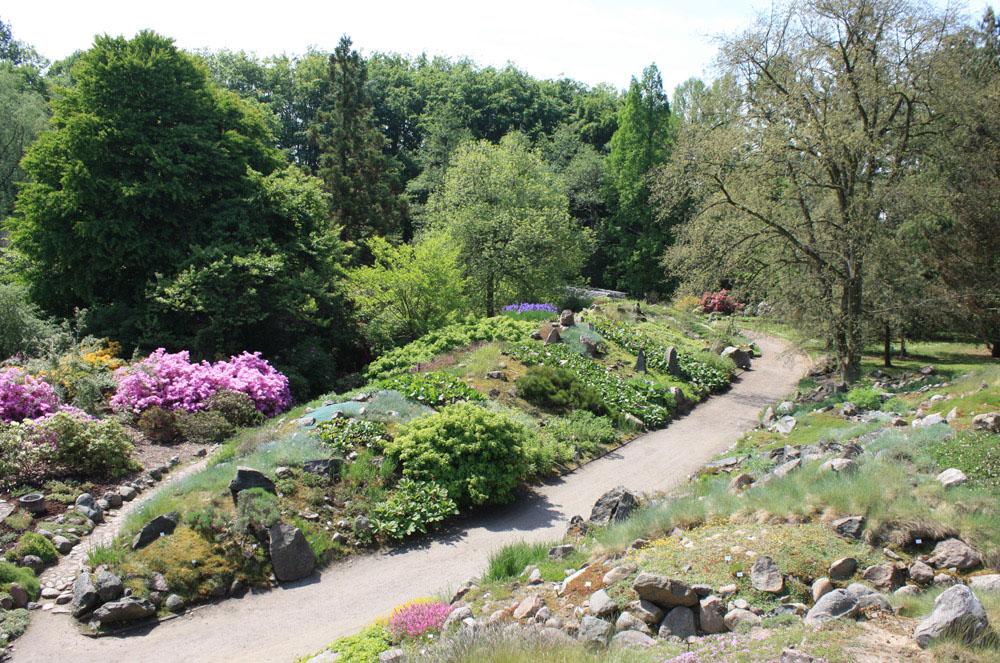 Garten Rostock general information on the botanical garden botanischer garten